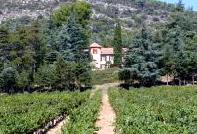 image of Pigoudet
