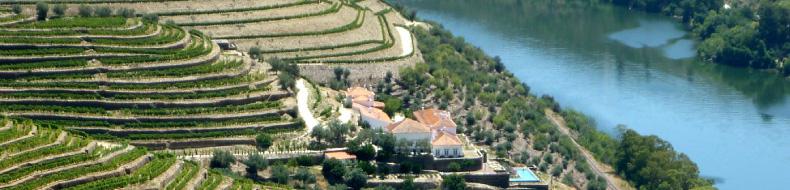 image of Quinta da Romaneira