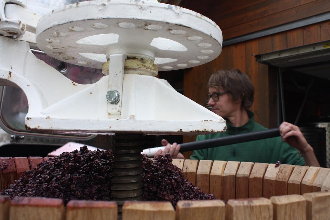 Wein Werkstatt Daniel Bach