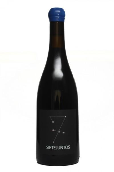 MicroBio Wines Sietejuntos Syrah