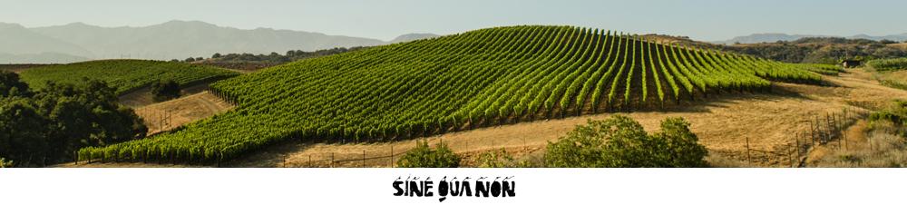 image of Sine Qua Non