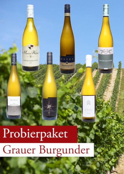 Grauer Burgunder TOP Probierpaket 12 Flaschen