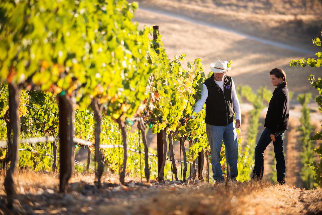 image of Epoch Estate Wines